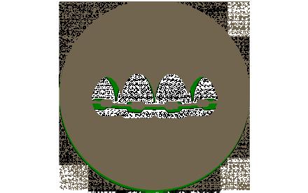 tratamientos-ortodoncia
